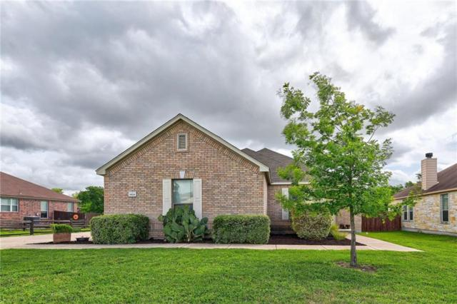 19201 Pencil Cactus Dr, Pflugerville, TX 78660 (#9323095) :: The Heyl Group at Keller Williams