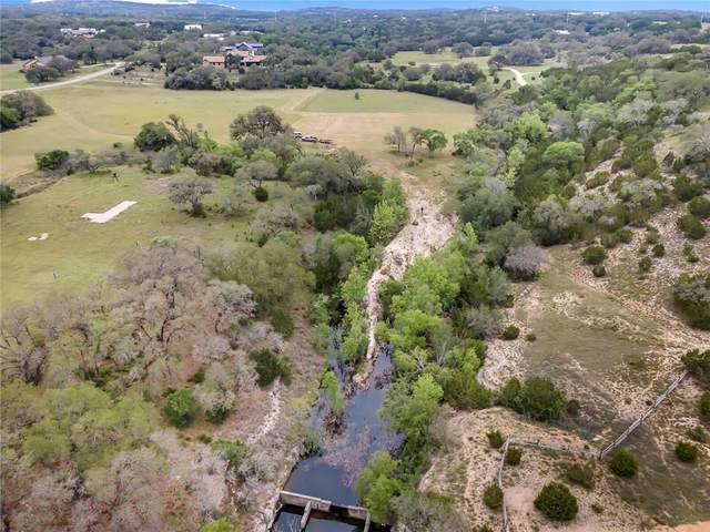 424 Dario Dr, Dripping Springs, TX 78620 (#9352992) :: The Perry Henderson Group at Berkshire Hathaway Texas Realty