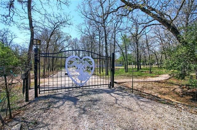 151 Spring Creek Dr, Cedar Creek, TX 78612 (#9374076) :: Watters International