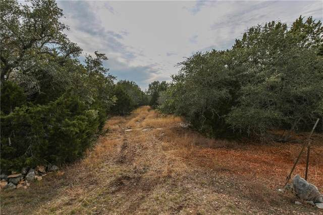 1353 Falconwood Dr, San Marcos, TX 78666 (#9411779) :: 12 Points Group