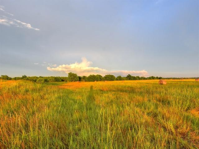 000 County Road 460 (Lot 4), Coupland, TX 78615 (#9424120) :: The Perry Henderson Group at Berkshire Hathaway Texas Realty