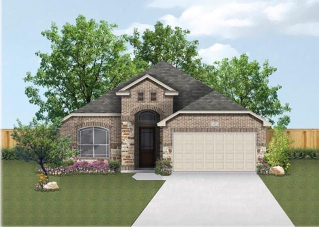 117 Emery Oak Ct, San Marcos, TX 78666 (#9439959) :: The ZinaSells Group