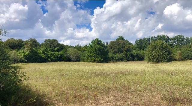 000 Cr 374, Milano, TX 76556 (#9448265) :: The Perry Henderson Group at Berkshire Hathaway Texas Realty