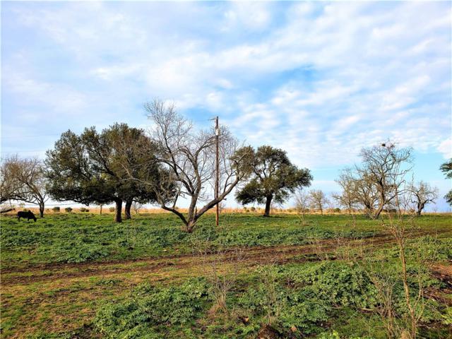 2577 County Road 219, Florence, TX 76527 (#9461645) :: Papasan Real Estate Team @ Keller Williams Realty