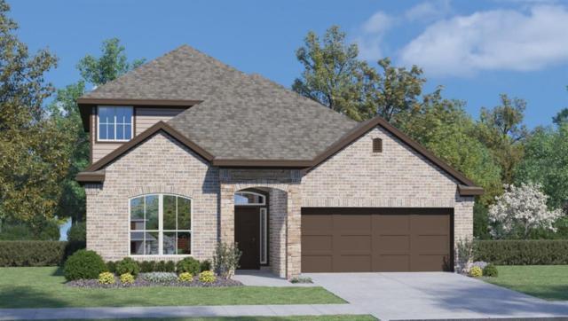 18313 Cercina Trl, Pflugerville, TX 78660 (#9464212) :: Douglas Residential