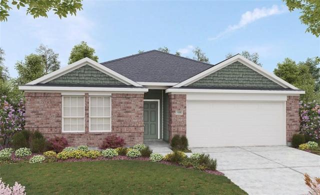 13617 Arbor Hill Cv, Manor, TX 78653 (#9465432) :: Ana Luxury Homes