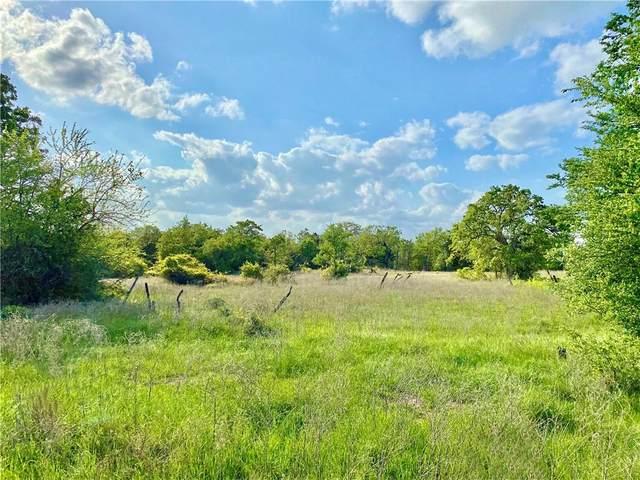 1007 Pr 5002, Ledbetter, TX 78946 (#9487755) :: Zina & Co. Real Estate