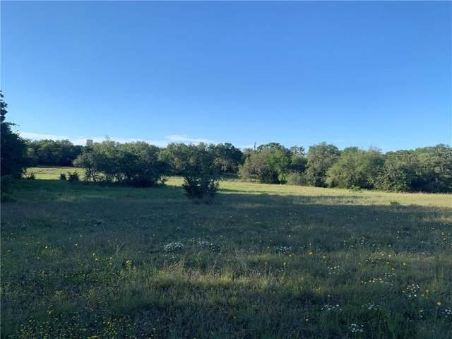 190 Mustang Mesa, Liberty Hill, TX 78642 (#9491150) :: Lauren McCoy with David Brodsky Properties
