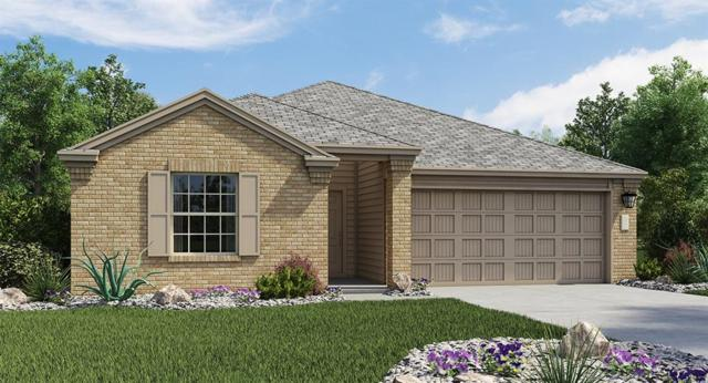 203 Helen Rd, Hutto, TX 78634 (#9517903) :: The ZinaSells Group