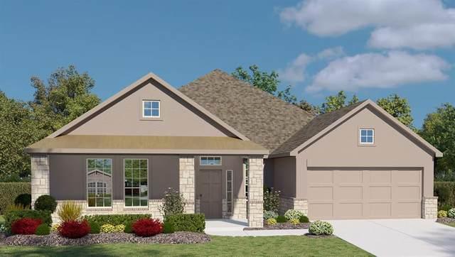1908 Los Santos Dr, San Marcos, TX 78666 (#9527367) :: Papasan Real Estate Team @ Keller Williams Realty