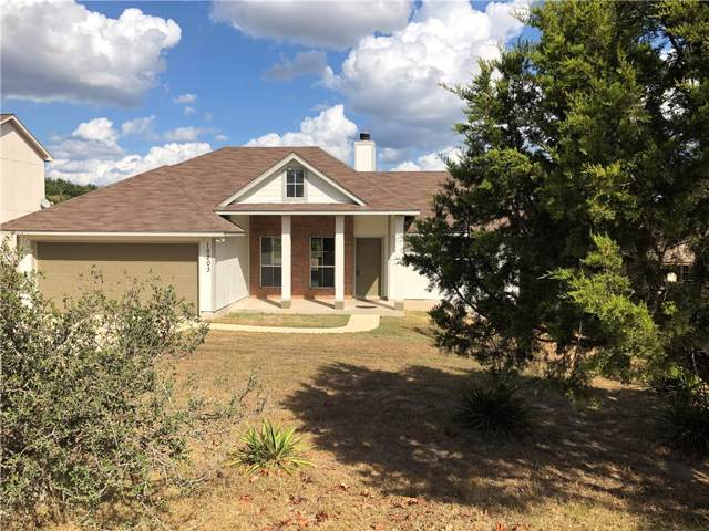 10203 Sandy Beach Rd, Dripping Springs, TX 78620 (#9529704) :: The Perry Henderson Group at Berkshire Hathaway Texas Realty