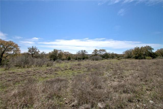 2033 San Jose Way, Canyon Lake, TX 78133 (#9549761) :: Realty Executives - Town & Country