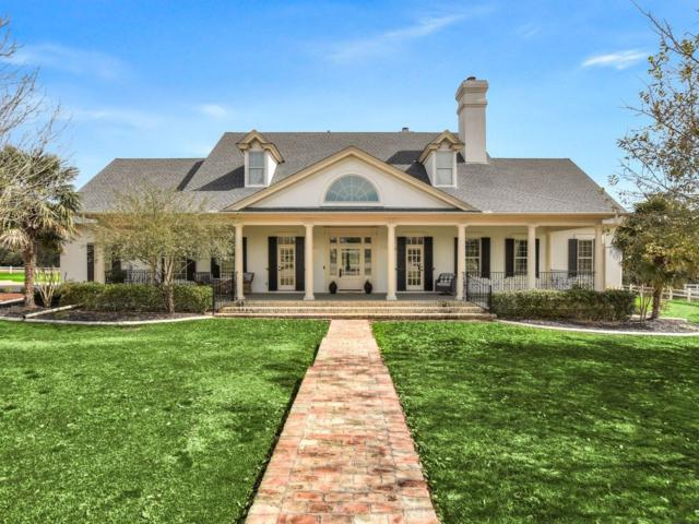 158 Vincas Shadow Ct, Driftwood, TX 78619 (#9556646) :: Elite Texas Properties