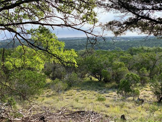 1800 Stagecoach Ranch Rd, Dripping Springs, TX 78620 (MLS #9575830) :: Brautigan Realty