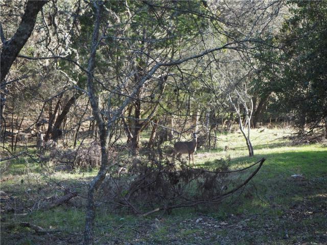 1209 Lazy Ln, San Marcos, TX 78666 (#9578852) :: The Heyl Group at Keller Williams
