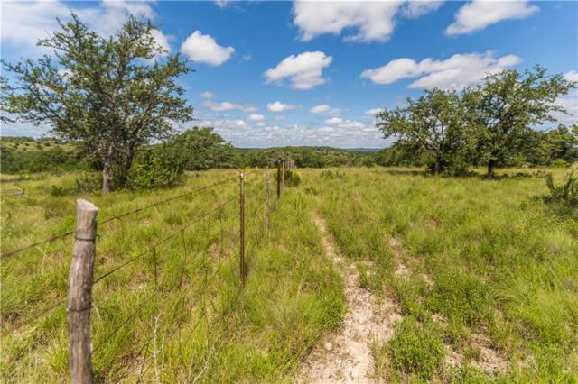 TBD Crabapple Road, Blanco, TX 78606 (#9584218) :: The Heyl Group at Keller Williams
