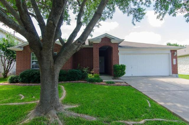 1414 Terra St, Round Rock, TX 78665 (#9590587) :: The Heyl Group at Keller Williams