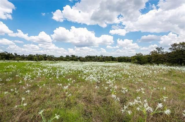 TBD County Road 467, Elgin, TX 78621 (#9591348) :: Papasan Real Estate Team @ Keller Williams Realty