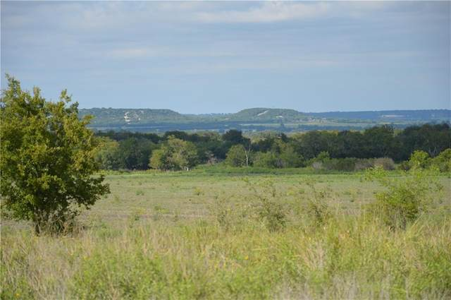 TBD Fm 219 Rd, Cranfills Gap, TX 76710 (#9595689) :: Realty Executives - Town & Country