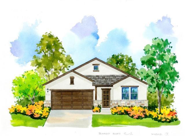 16921 Borromeo Avenue, Pflugerville, TX 78660 (#9600870) :: Watters International