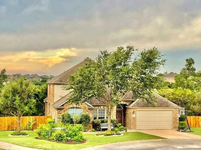 199 Wild Plum Way, Austin, TX 78737 (#9617032) :: Papasan Real Estate Team @ Keller Williams Realty