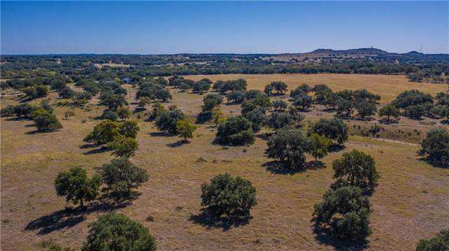 488 Vio-Lin Rd, Johnson City, TX 78636 (#9625362) :: The Perry Henderson Group at Berkshire Hathaway Texas Realty