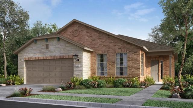 3305 Bianco Ter, Round Rock, TX 78665 (#9636834) :: Papasan Real Estate Team @ Keller Williams Realty