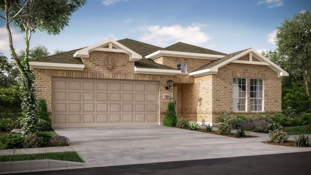 5125 Veranda Ter, Round Rock, TX 78665 (#9644289) :: Papasan Real Estate Team @ Keller Williams Realty