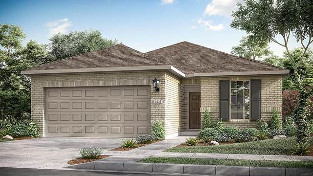 3251 Bartoli Gdns, Round Rock, TX 78665 (#9675080) :: The Summers Group
