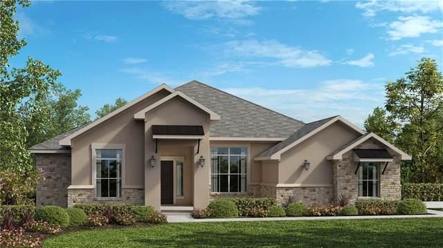 102 Red Tail Hawk Ln, Cedar Creek, TX 78612 (#9683662) :: Zina & Co. Real Estate