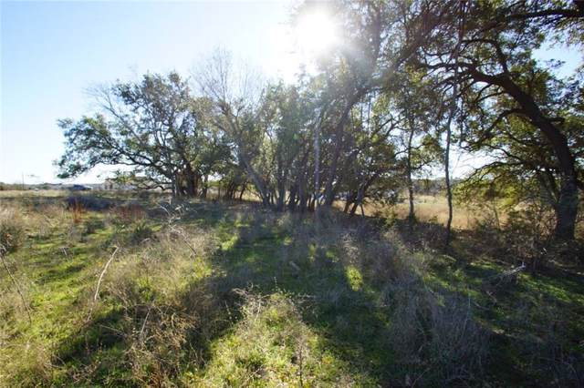 Lot 17 Kleingrass Ct, Bertram, TX 78605 (#9691895) :: Realty Executives - Town & Country