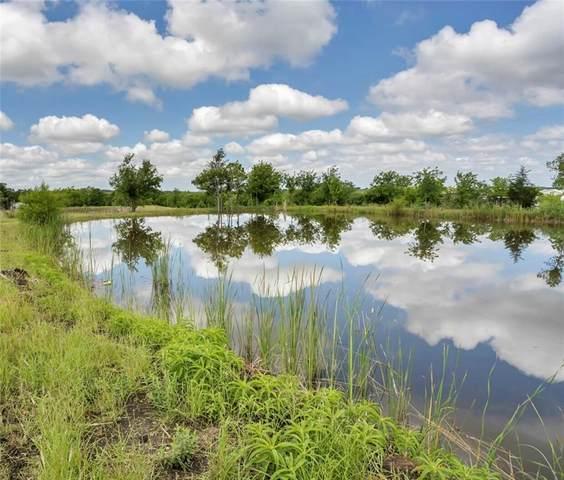 7500 Niederwald Strasse, Kyle, TX 78640 (#9698416) :: Azuri Group | All City Real Estate