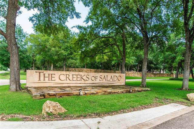 3029 Rolling Meadow Dr, Salado, TX 76571 (#9715298) :: Papasan Real Estate Team @ Keller Williams Realty