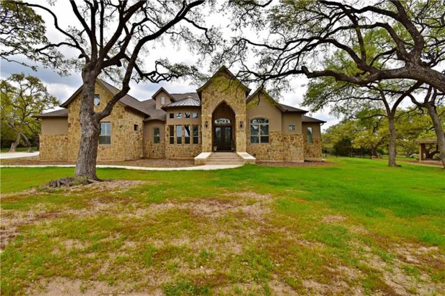 1452 Decanter Dr, New Braunfels, TX 78132 (#9725332) :: Papasan Real Estate Team @ Keller Williams Realty