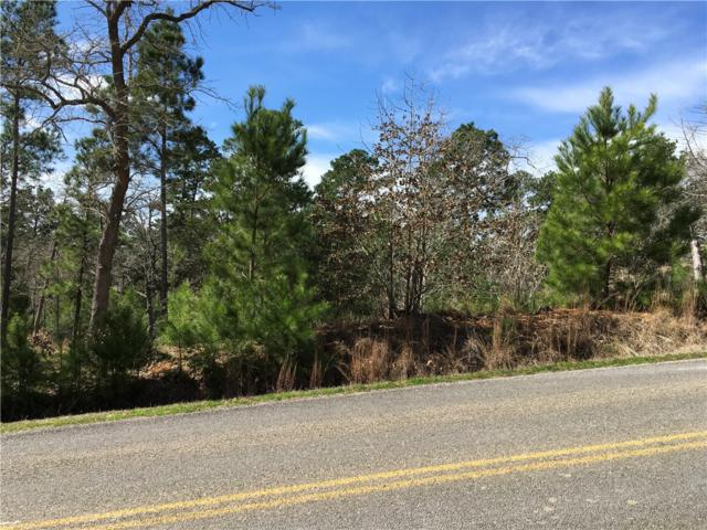 Lot 1700 Tahitian Dr, Bastrop, TX 78602 (#9730173) :: The Perry Henderson Group at Berkshire Hathaway Texas Realty