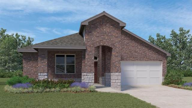 16905 Aventura Ave, Pflugerville, TX 78660 (#9734695) :: The Perry Henderson Group at Berkshire Hathaway Texas Realty