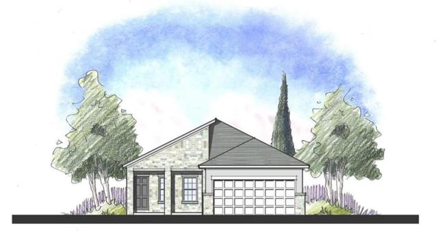 516 Lacey Oak Loop, San Marcos, TX 78666 (#9746530) :: The Perry Henderson Group at Berkshire Hathaway Texas Realty