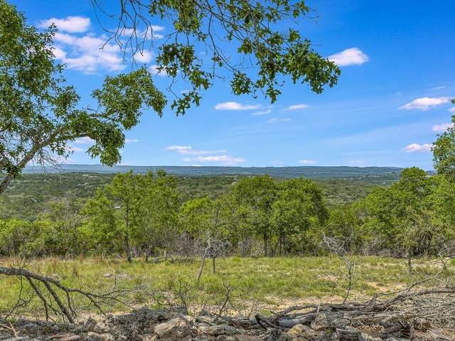 2300 Stagecoach Ranch Loop, Dripping Springs, TX 78620 (#9769391) :: Ben Kinney Real Estate Team