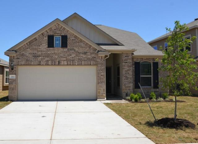 260 Chickadee Ln, Leander, TX 78641 (#9783554) :: The Perry Henderson Group at Berkshire Hathaway Texas Realty
