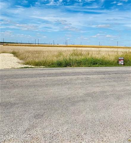 250 Stork Rd, Del Valle, TX 78617 (#9784220) :: The Summers Group