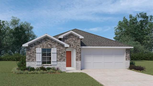 932 Armadillo Dr, Seguin, TX 78155 (#9789943) :: Lancashire Group at Keller Williams Realty