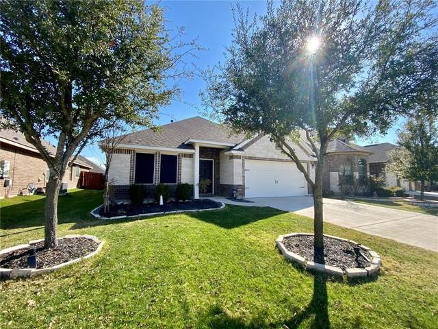 8384 Angelo Loop, Round Rock, TX 78665 (#9790577) :: Realty Executives - Town & Country