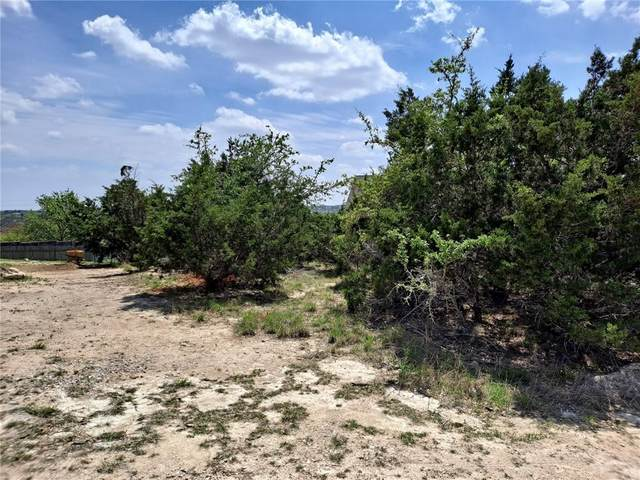10611 Knob Hl, Dripping Springs, TX 78620 (#9799140) :: The Summers Group