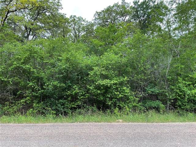 TBD Lower Elgin Rd, Elgin, TX 78621 (#9821050) :: Zina & Co. Real Estate