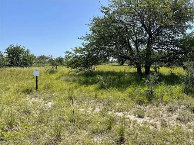 89 Summit Ridge Trail Dr, Johnson City, TX 78636 (#9824680) :: Ben Kinney Real Estate Team