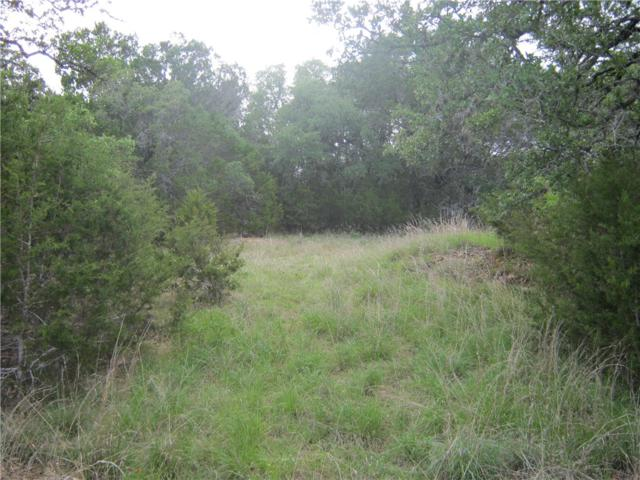 22218 Briarcliff Dr, Spicewood, TX 78669 (#9826359) :: Zina & Co. Real Estate