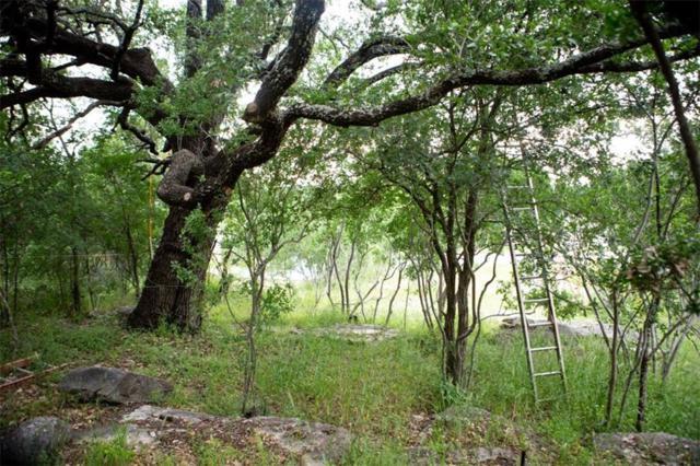 811 Camino Cielo, Marble Falls, TX 78654 (#9837780) :: The Heyl Group at Keller Williams