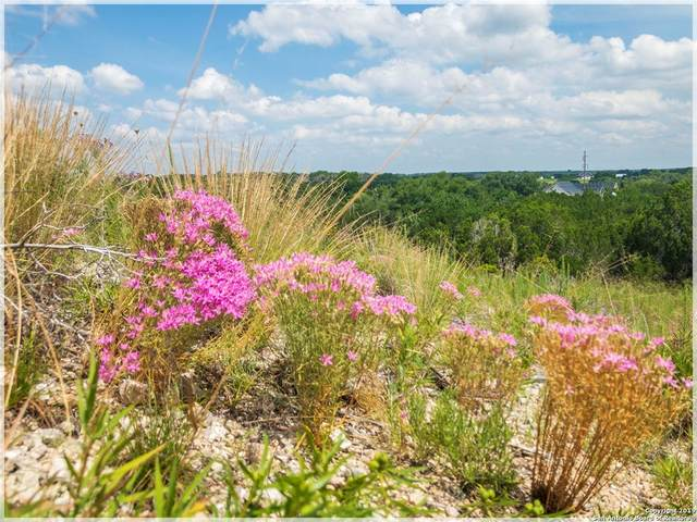Lot 25 Rain Lily Ct, Burnet, TX 78611 (#9839380) :: Realty Executives - Town & Country