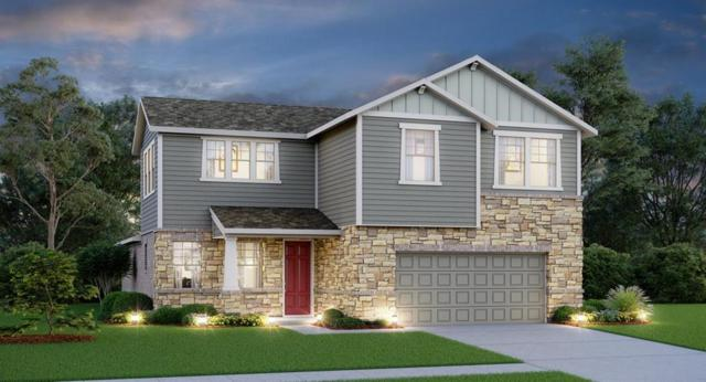 1332 Terrace View, Georgetown, TX 78634 (#9841703) :: Watters International