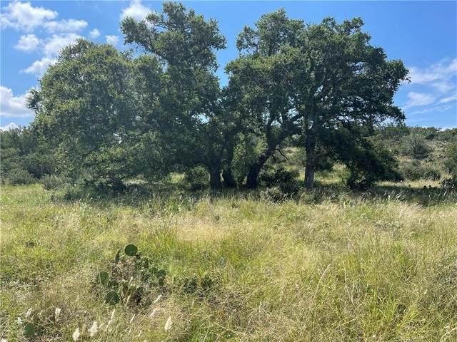 2 Commanche Rdg, Round Mountain, TX 78663 (#9844264) :: Papasan Real Estate Team @ Keller Williams Realty